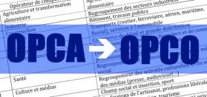 Formation Professionnelle – 11 Opérateurs de Compétences (OPCO) finalement agréés